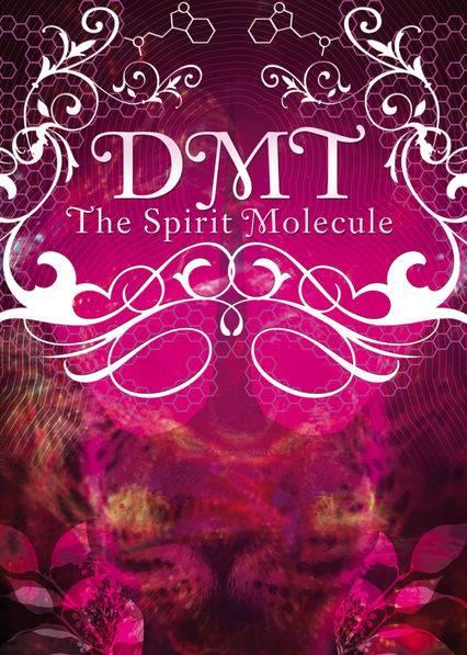 DMT: The Spirit Molecule (2010) by Mitch Schultz
