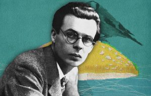 Island, a psychedelic novel by Aldous Huxley (1962)