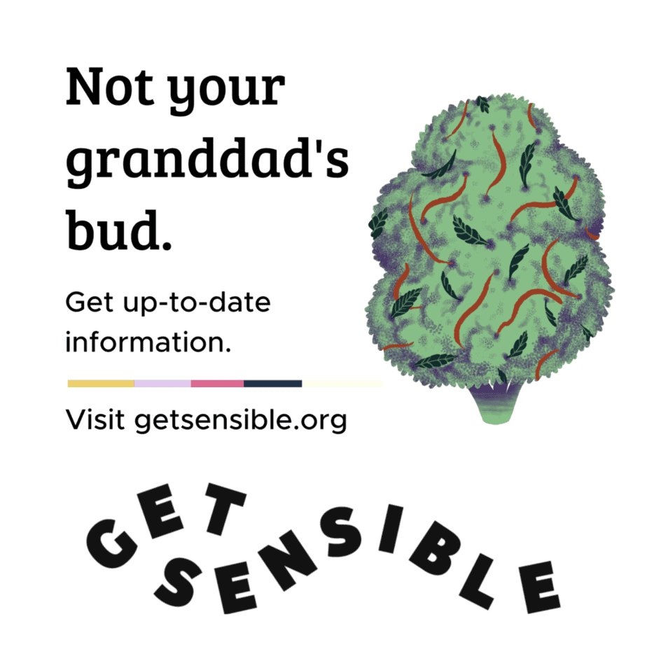 CSSDP launches the Get Sensible toolkit for Canadian parents of youth
